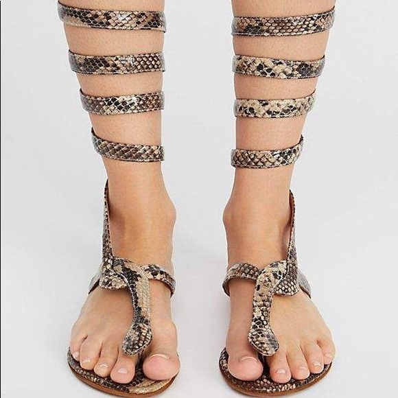 42ccb9759a9 Free People Shoes - Free People Jeffrey Campbell Boa Gladiator Sandal